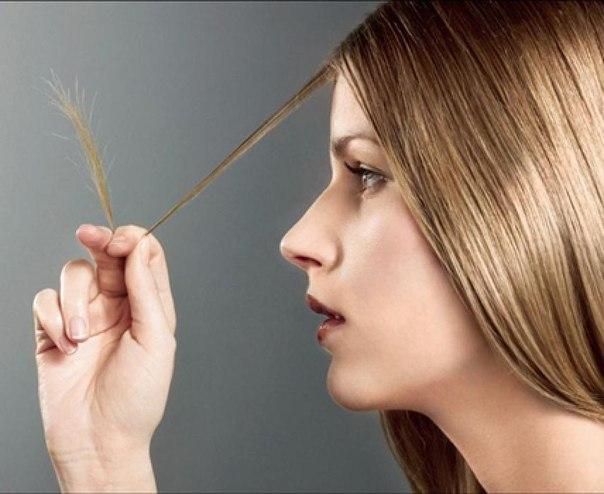Волосы жирные у корней и сухие кончики