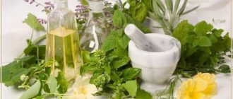 Народные средства от себорейного дерматита